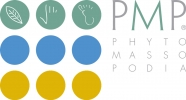PMP PHYTOMASSOPODIA - MEI